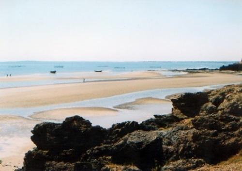 标题:兴城菊花岛--海湾 分类:风景图片 简介: 菊花岛古称觉华岛,俗称
