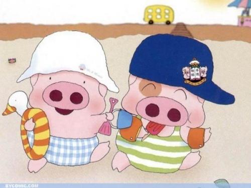 两个猪头的对话