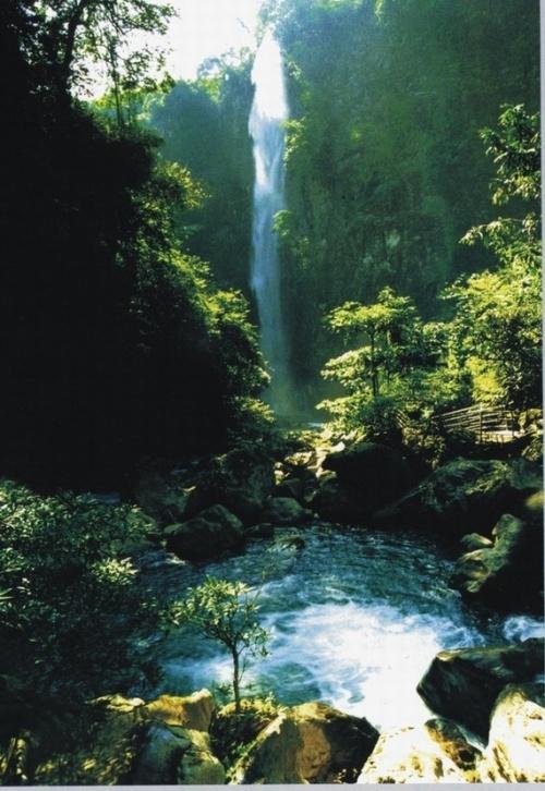 壁纸 风景 旅游 瀑布 山水 桌面 500_726 竖版 竖屏 手机